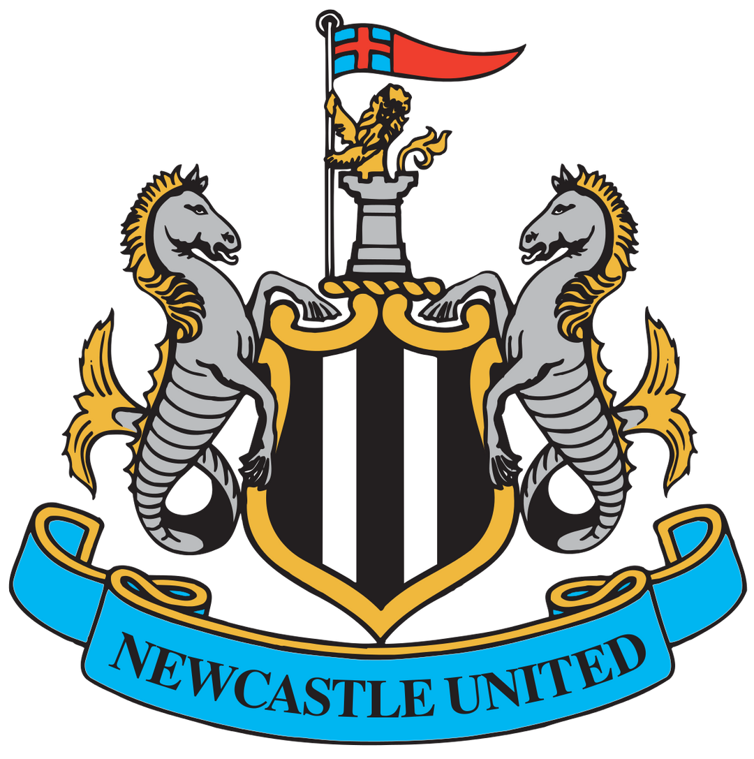 Newcastle United Situation: